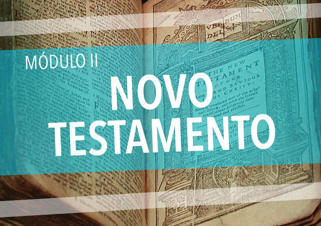 Módulo II: Novo Testamento (Teologia: curso básico)